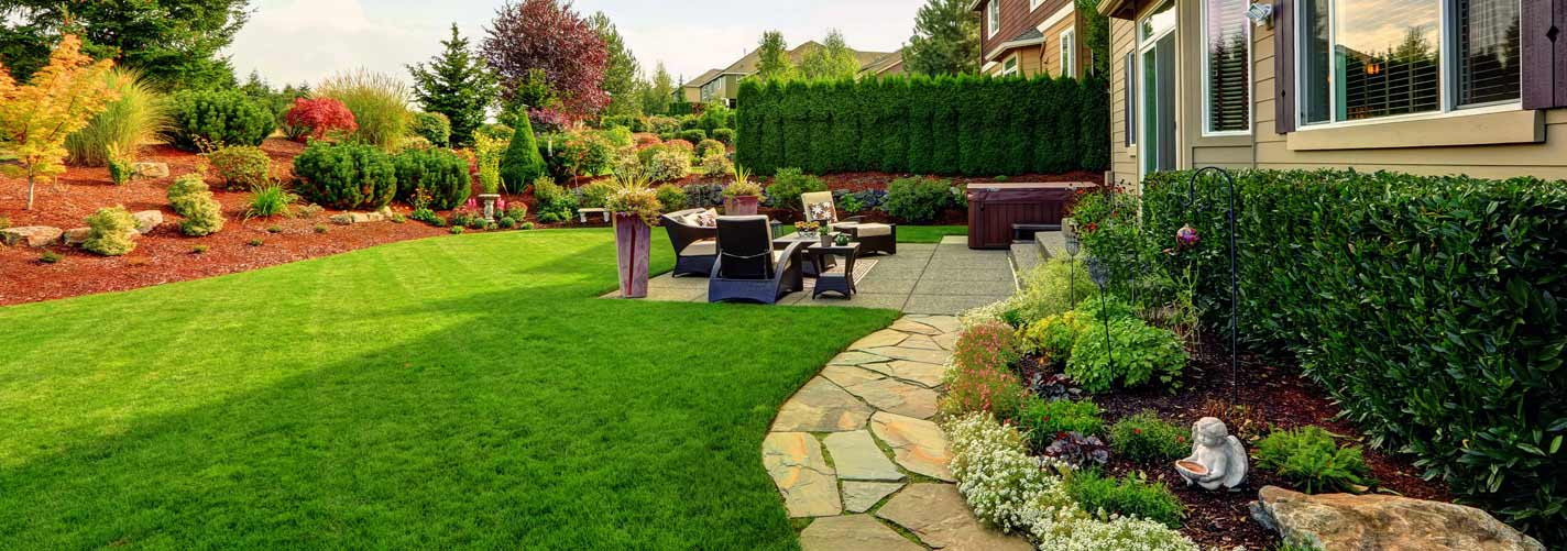 Healthy, Green Lawns Begins with AMS