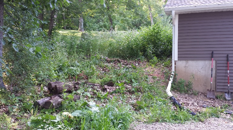 Retaining Wall (before)