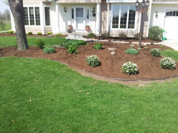 Complete redo of the flower beds